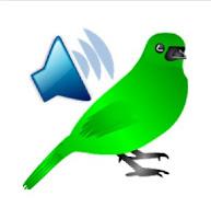 Amazing Birds Voice Technology 2021