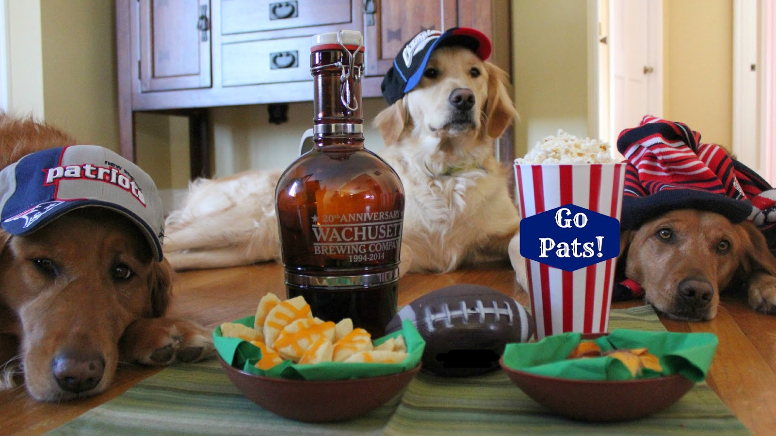 dogs ready for Super Bowl party