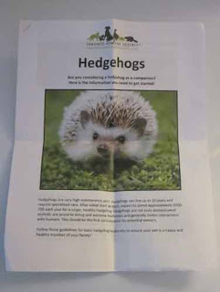 Hedgehog Care Book Toronto Humane Society.