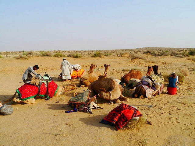 Jaisalmer for camel safari in the Thar