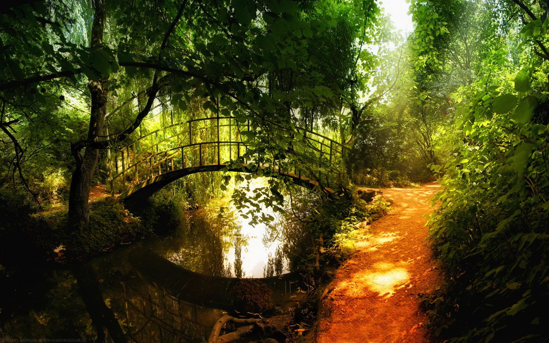 Wallpapers: Nature 21 Widescreen Wallpaper HD 1440x900