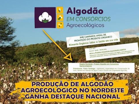 Projeto sobre Algodão Agroecológico ganha destaque nacional