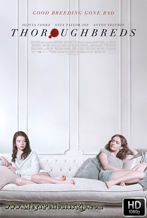 Thoroughbreds [1080p] [Latino-Ingles] [MEGA]