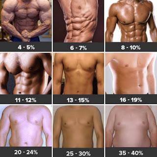 Carta body fat dan visceral fat