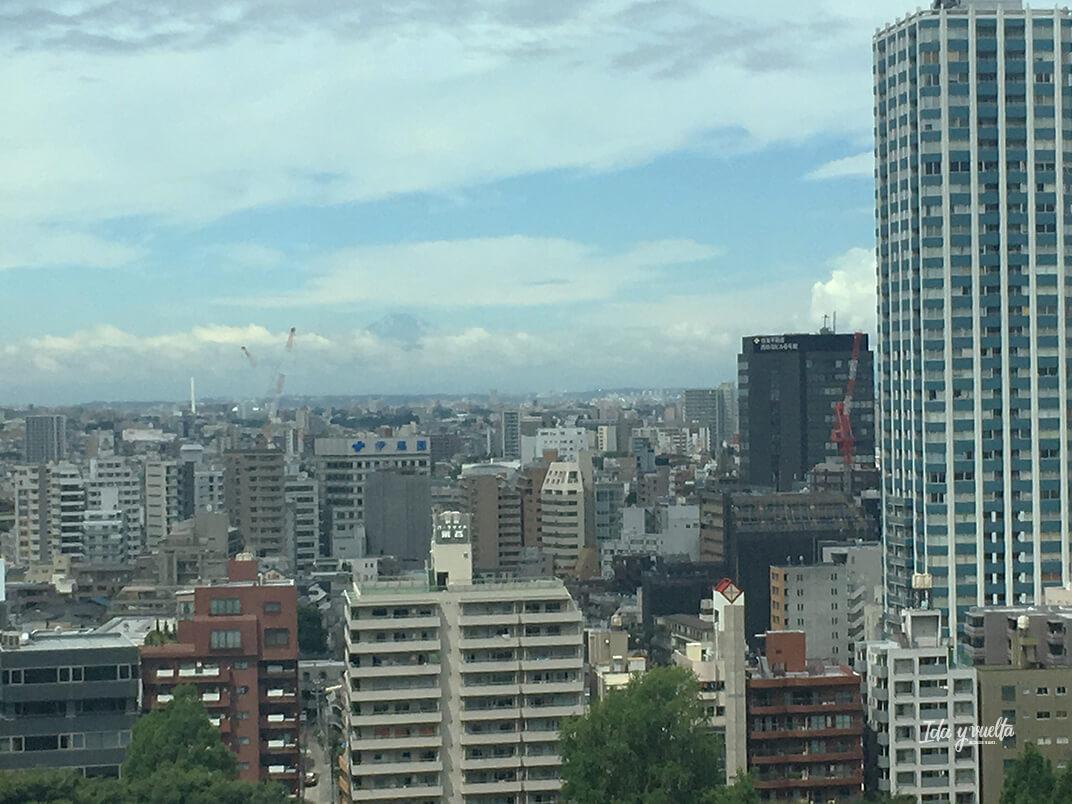 Monte Fuji al fondo