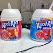 Kool-Aid Concentration & Particle Modeling
