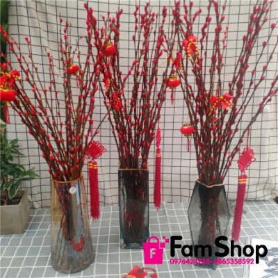 Shop ban nu tam xuan o Thanh Oai