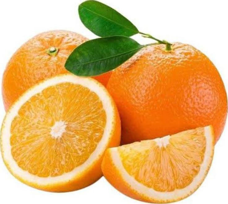 bibit jeruk sunkist navel Manado