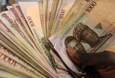 hand holding naira notes