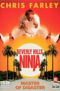 Um Ninja da Pesada (1997) Dublado 360p