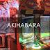 Viajera Vlog: Akihabara