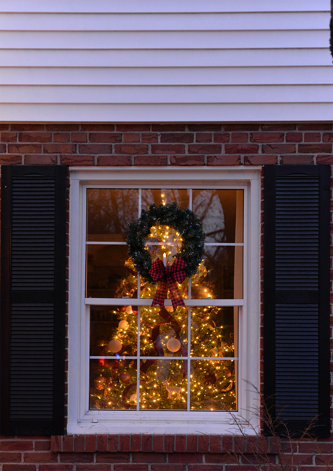 white house decorated with white christmas lights, wreaths on every window, Christmas tree through window