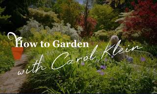 Gardening with Carol Klein