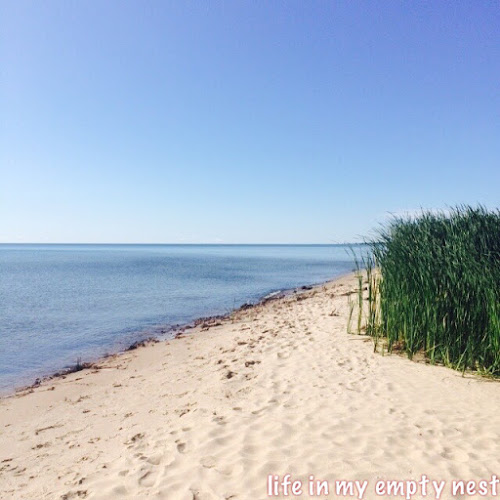 Lake Huron - Life in My Empty Nest