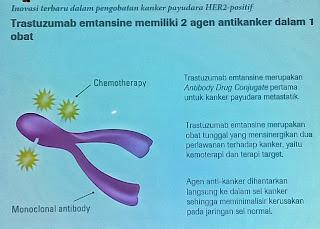 Trastuzumab emtansine Bisa Blokir Kanker Payudara Tipe ...