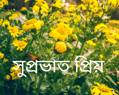 Bengali good morning Images for whatsapp