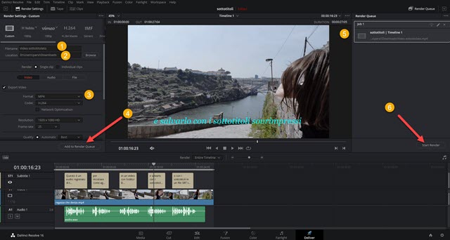 esportazione video con davinci resolve