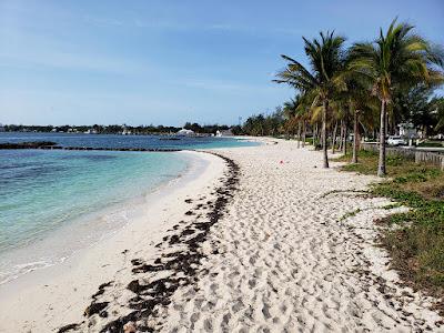 Beach, sea and coconut trees