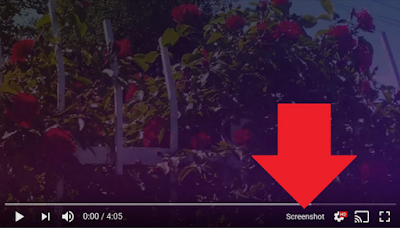 Here Is How to Take Screenshots from Currently Playing Videos on YouTube