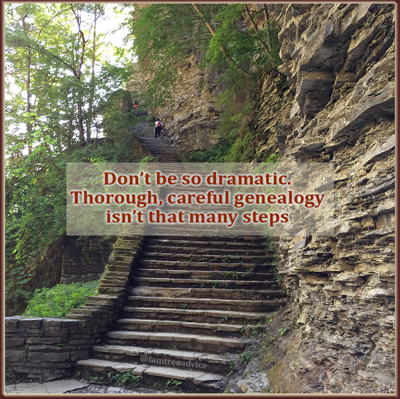 Genealogy is a journey. You can't take a journey without taking steps.