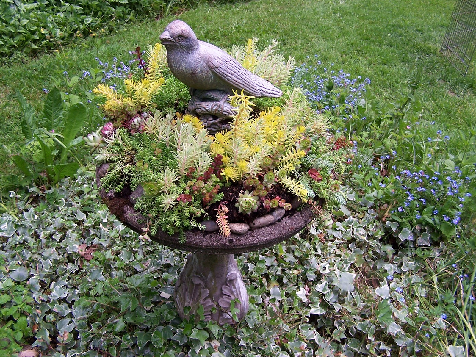 Beatrice Euphemie Bird Bath Planter