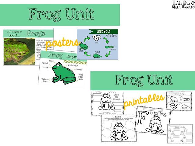 frogs unit
