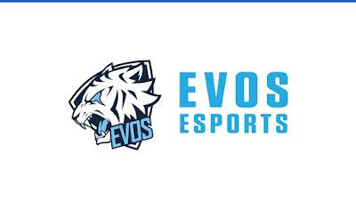 Lowongan Kerja PT Evos Esports Indonesia - loker.radenpedia.com