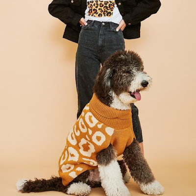 Dog sits wearing Ani Jumper in orange leopard with woman standing behind