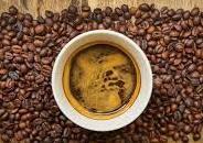 perusahaan yang mengolah dan menjual biji kopi ose / sortasi