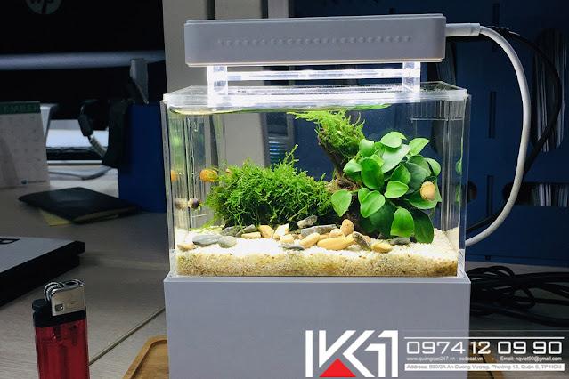 Bể cá mini để bàn phong thủy đẹp