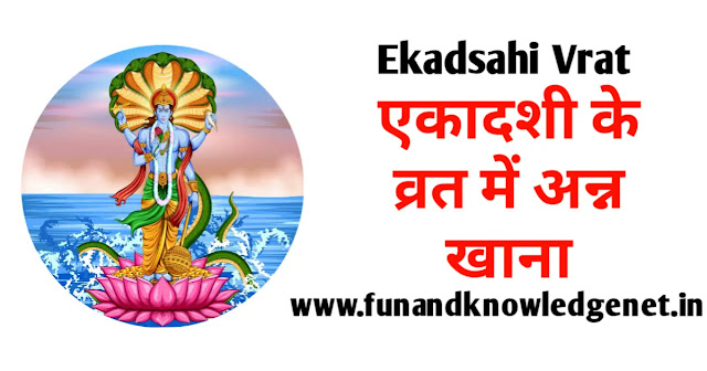 एकादशी के व्रत में क्या नहीं खाना चाहिए - Ekadashi ke Vrat mein kya nahi Khana Chahiye