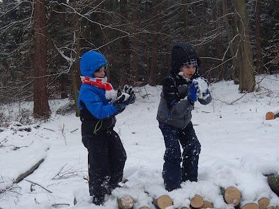 zimowy spacer, zabawy na śniegu, śnieżyca w lesie