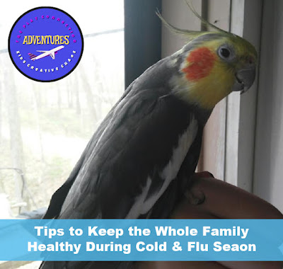 Tips to Keep entire family healthy this winter in cold and flu season