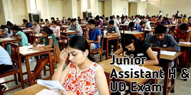 Junior assistance H& UD - 2020