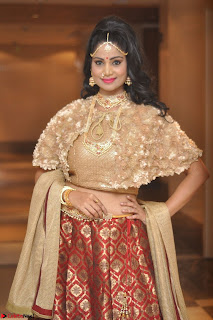 Mehek in Designer Ethnic Crop Top and Skirt Stunning Pics March 2017 040.JPG