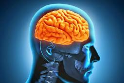 Ingin Pertajam Otak? Lakukan Cara-cara Ini