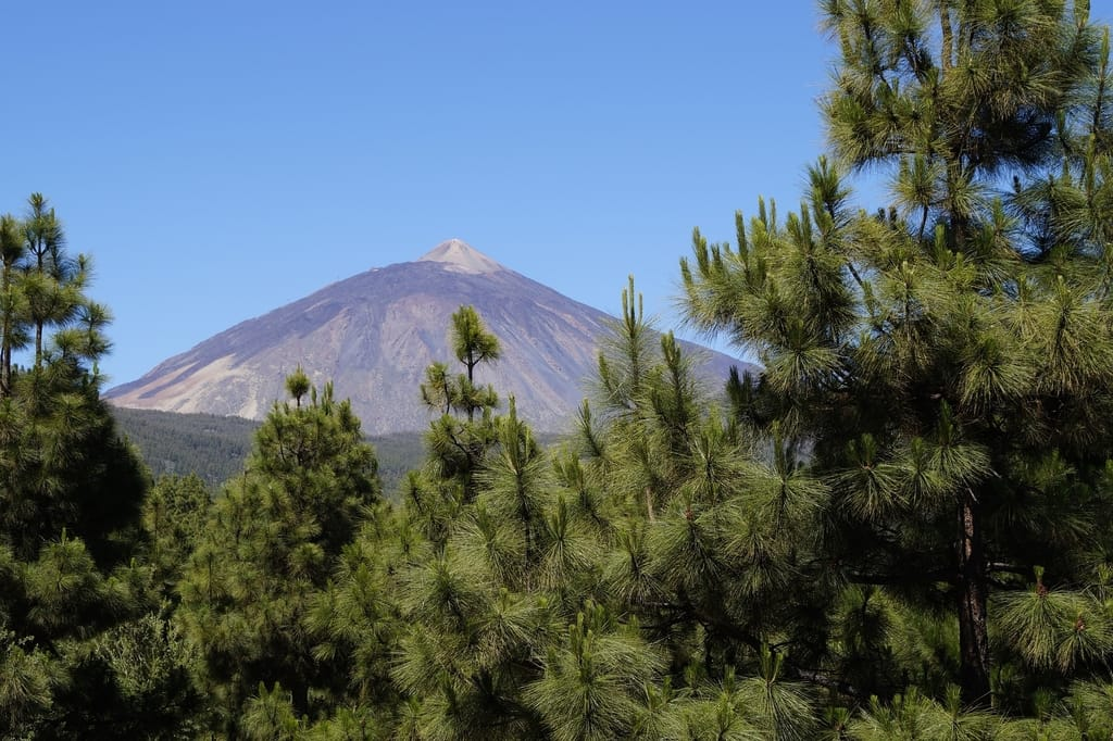 canary islands points of interest