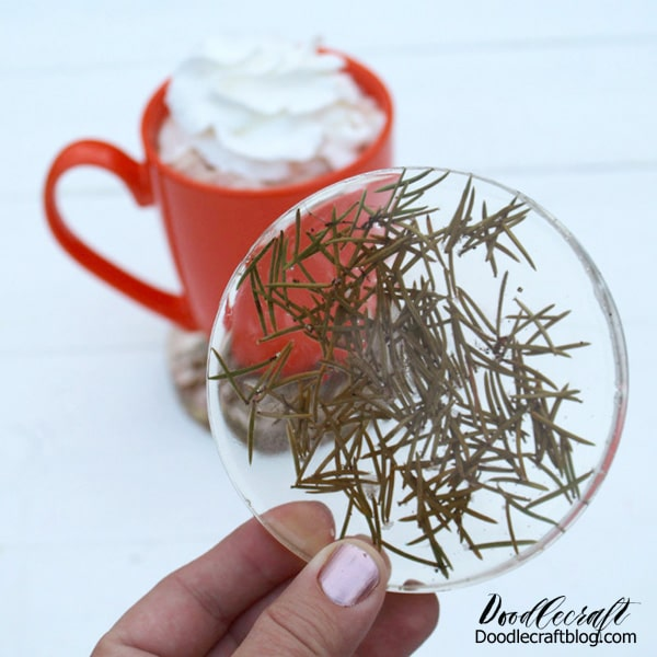 Resin Pine Needle Coasters made from real Christmas tree, great for married couples and families to remember each year.