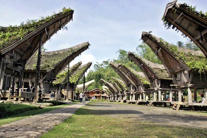 14 Tempat Wisata di Tana Toraja Terbaru yang Wajib Dikunjungi