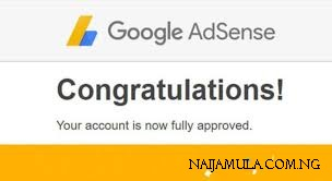 How I Got Google Adsense Approval In Just A Month in 2020