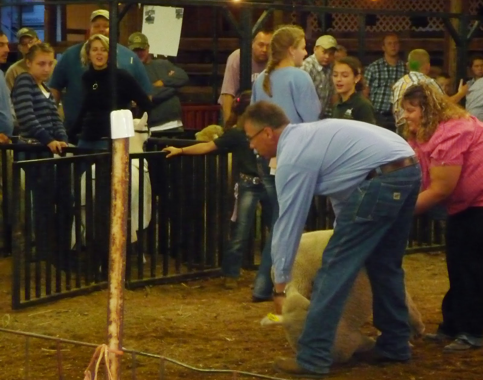 Wild Rose Farm Wrf Visits The Lawrence County Fair