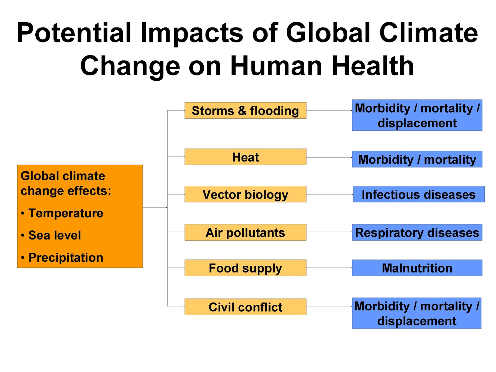 Global Warming And Its Catastrophic Effect On Human S