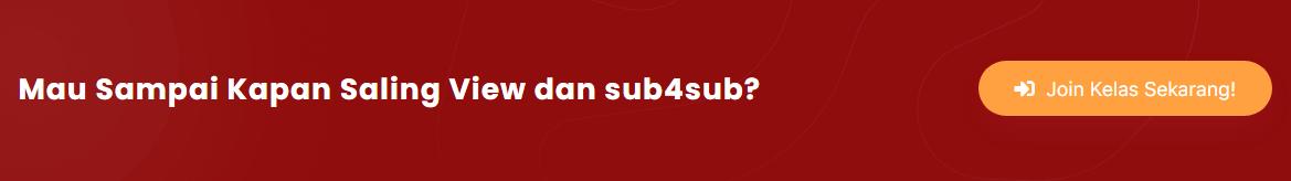 Youtuber Sukses