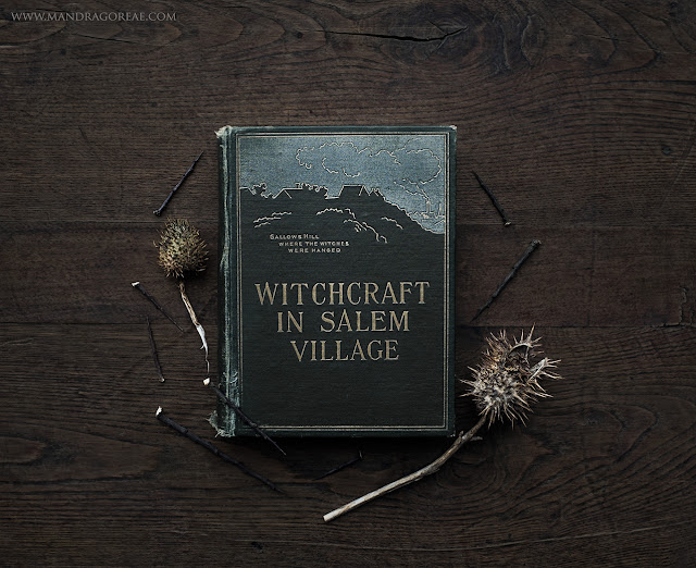"""""""Witchcraft in Salem Village"""" by Winfield S. Nevins"""