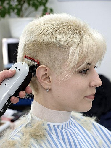 The Pixie Revolution Getting Clippered