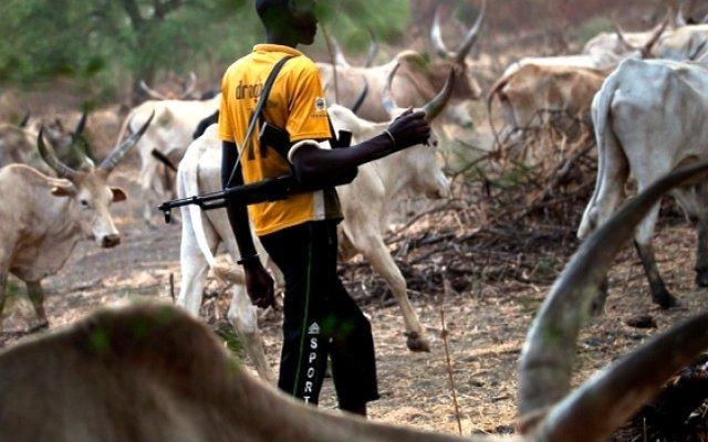 Farmer tied to a tree and beaten up by Fulani
