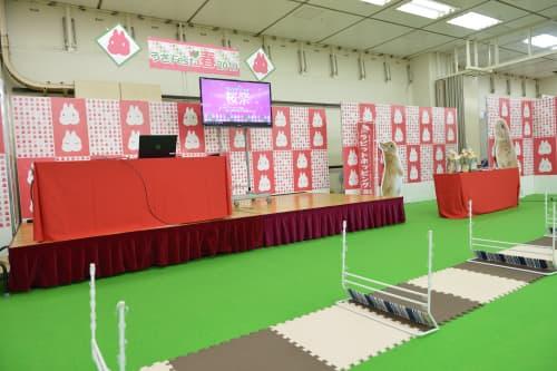 うさフェスタ 2020 春は3月14日、15日に横浜貿易ホールで開催!