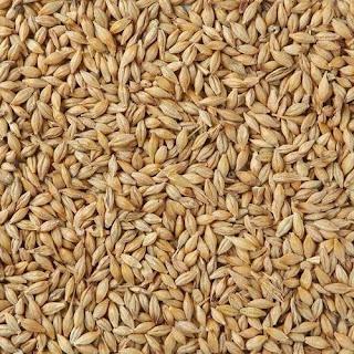 Barley fundamental report