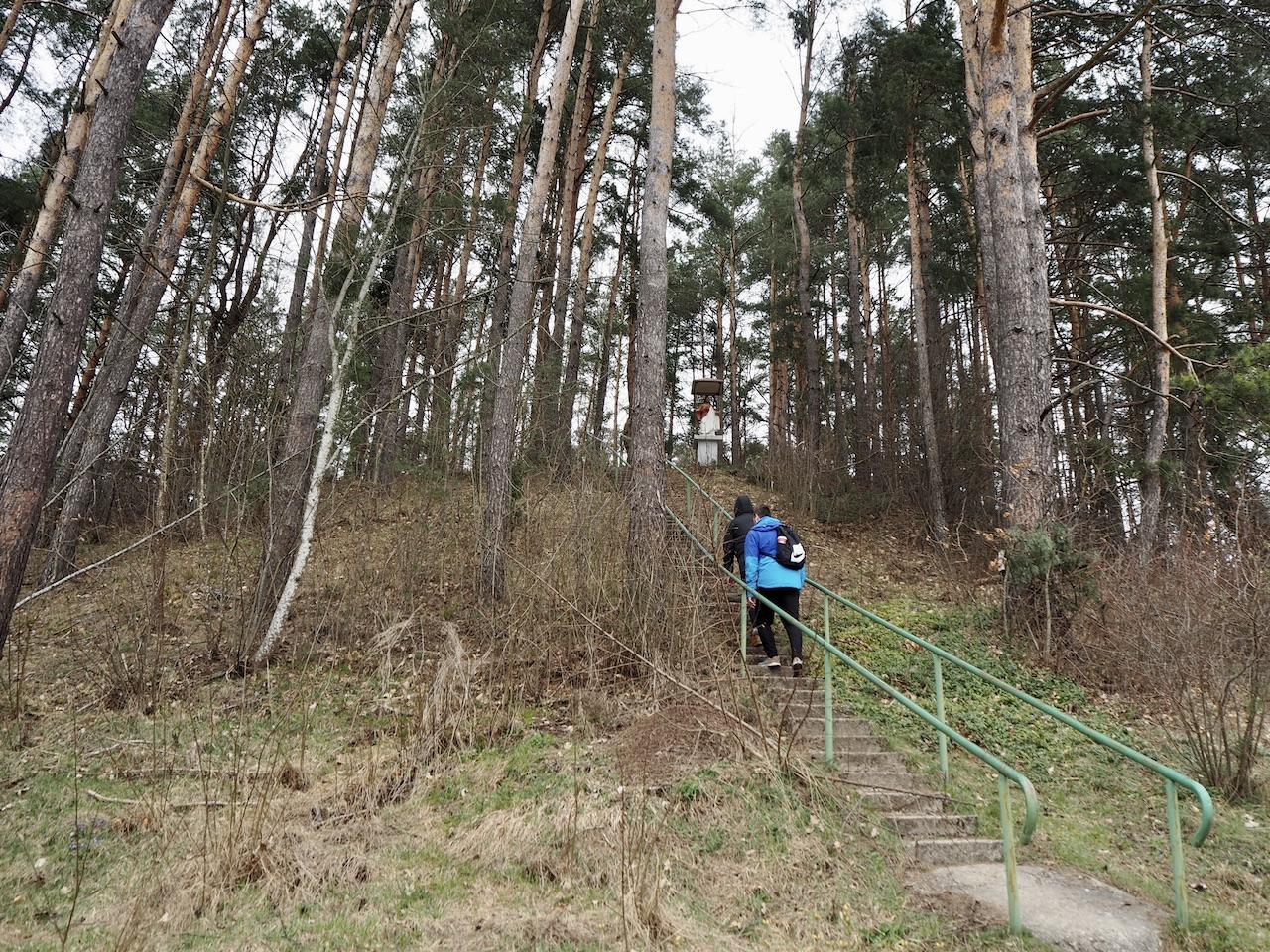 Laiptai į Staviškių piliakalnį