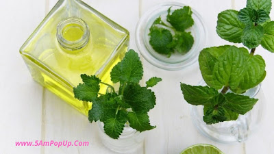 How Do Essential Oils Work For Cold And Cough In Hindi? Cough Se Bachne Ke Upay